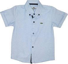 Рубашка поло с коротким рукавом LACOSTE на мальчика размер 86-146