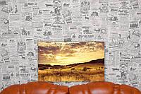 "Картина на холсте ""Закат. Холмы. Поля. Природа"". 50х30 см."