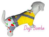Костюм Вишни желтый для собак DogsBomba