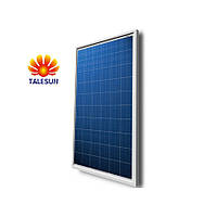 Солнечная батарея TALESUN TP660P-260W