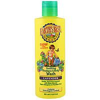 Earths Best, Натуральный успокаивающий шампунь и средство для мытья тела, лаванда, 8.5 жидких унций (251 мл)