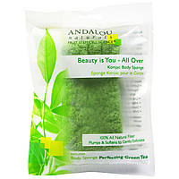 Andalou Naturals, All-Over Konjac Body Sponge, 1 ct