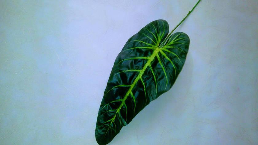 Искусственный лист, фото 2