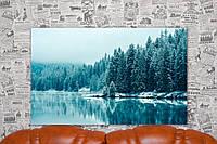 """Картина на холсте """"Лес. Зима. Канада. Природа"""".  80х50 см."""