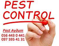 Предоставление услуги Пест Аудита, Pest Audit