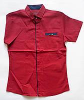 Однотонная рубашка подросток для мальчиков Blueland р-р 134-170 см