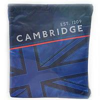 Сумка для обуви Cambridge blue с карманом