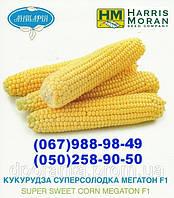 Кукуруза сахарная Мегатон F1