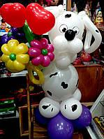 Собачка долматинец с букетом из воздушных шариков