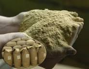 Дрожжи кормовые позволяют выращивать сельскохозяйственный скот наиболее быстро, при этом, не теряя энергетическую ценность в организме животного