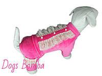 Костюм велюровый с кружевом (разные цвета и размеры) Dogs Bomba