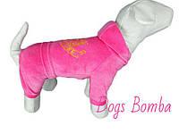 Костюм велюровый с капюшоном (разные цвета и размеры) Dogs Bomba