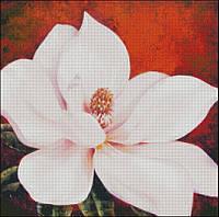 """Схема для вышивания """" К025 Magnolia"""""""