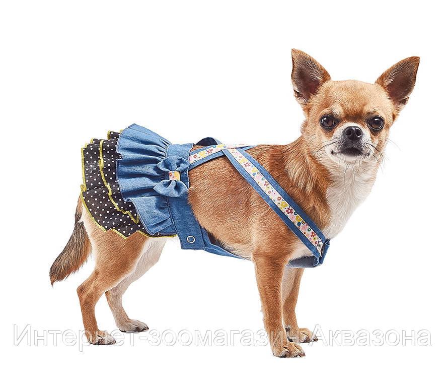 Pet Fashion платье Арина XS2