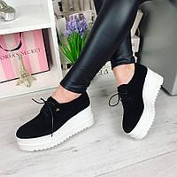 Женские туфли на шнурках, натуральная замша, черные / туфли женские на тракторной танкетке 7 см, модные