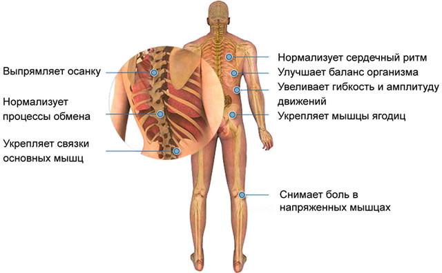 Массажный Обруч Здоровья польза
