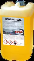 CONCENTRATA защитный воск с полимером