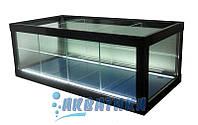 Торговые аквариумы для продажи устриц, фото 1