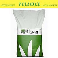 Універсальна насіння газонних трав Universal Robustica 20 кг