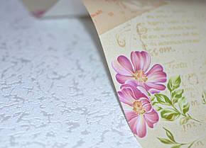 Обои на стену, детские, бабочки, цветы, влагостойкие, бумажные, B56,4 Письмо 8060-05, 0,53*10м, фото 2