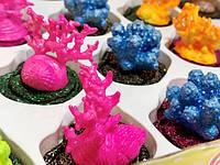 Оригинальная Прикольная Игрушка Декоративный Коралл Растущий в Воде