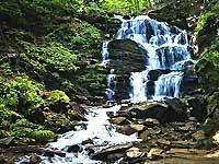 Поездка в Карпаты и Закарпатье - экскурсия водопад Шипот