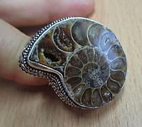 Перстень с аммонитом, размер 18,5 от студии LadyStyle.Biz, фото 1