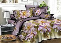 Комплект постельного белья двухспальный 180х220, (3009) Ранфорс