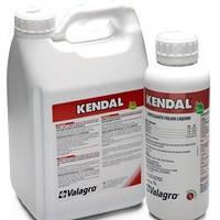 Кендал (1 л) - стимулирует защитные реакции растения, устойчивость к стрессам и болезням