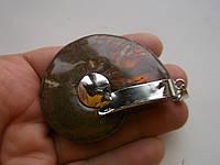 Большой кулон с древним аммонитом от студии LadyStyle.Biz, фото 1