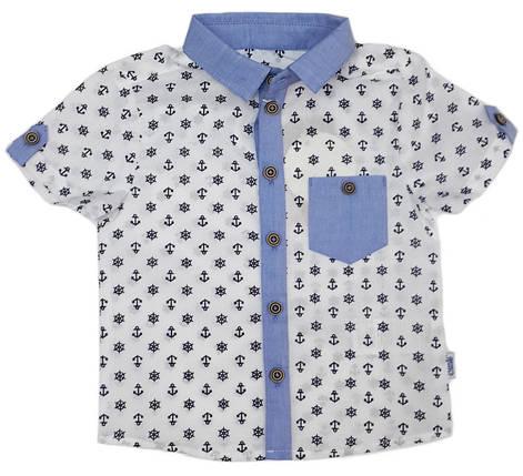 Рубашка с коротким рукавом на мальчика ТМ Бемби  РБ71 размер 92 , фото 2
