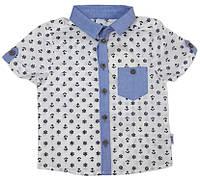 Рубашка с коротким рукавом на мальчика ТМ Бемби  РБ71 размер 92