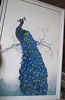 "Картина ""Павлин-символ роскоши"" от студии LadyStyle.Biz, фото 1"