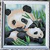 """Картина """"Панды"""" от студии LadyStyle.Biz"""