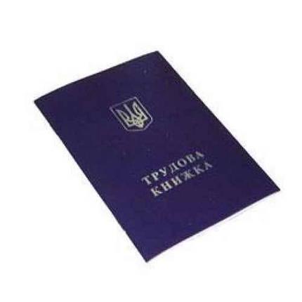 Бланки трудових книжок Монускрипт, фото 2