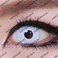 Белые линзы для глаз купить недорого в интернет магазине Украины. Большой ассортимент. Бесплатная доставка., фото 1