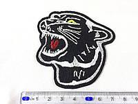 Нашивка Пантера