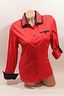 Женские однотонные рубашки (хлопок+ликра) Mod-da
