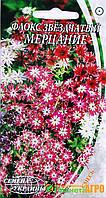Семена цветов Флокс звездчатый Мерцание (Семена)