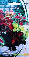 """Семена цветов Колеус, многолетнее, 0.1 г, """"Семена Украины"""", Украина"""