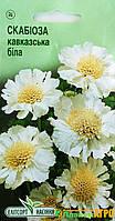 "Семена цветов Скабиоза Кавказская белая, многолетний , 10 шт,  ""Елітсортнасіння"", Украина."