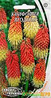 """Семена цветов Книфофия ягодная, многолетнее, 0,2 г,  """"Семена Украины"""", Украина."""