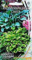 """Семена цветов Хоста гибридная смесь, многолетнее, 10 шт,  """"Семена Украины"""", Украина."""