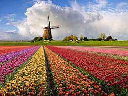 Шлях на Нідерланди