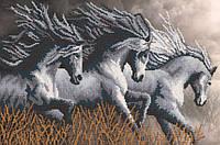 Неукротимые кони