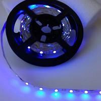 Светодиодная лента 12V 3528 IP20 Синяя F+Light