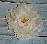 Головка пиона кремового пастельного цвета большая, фото 1