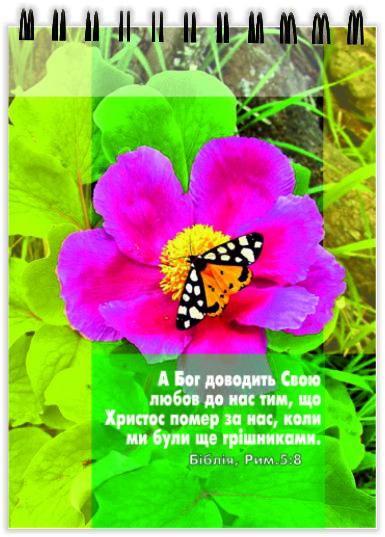 Блокнот на пружині: А Бог доводить Свою любов до нас тим... №12