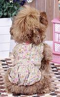 Платье для собак  Добаз , Dobaz  Милан желтый