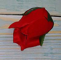 Головка бутона розы красная